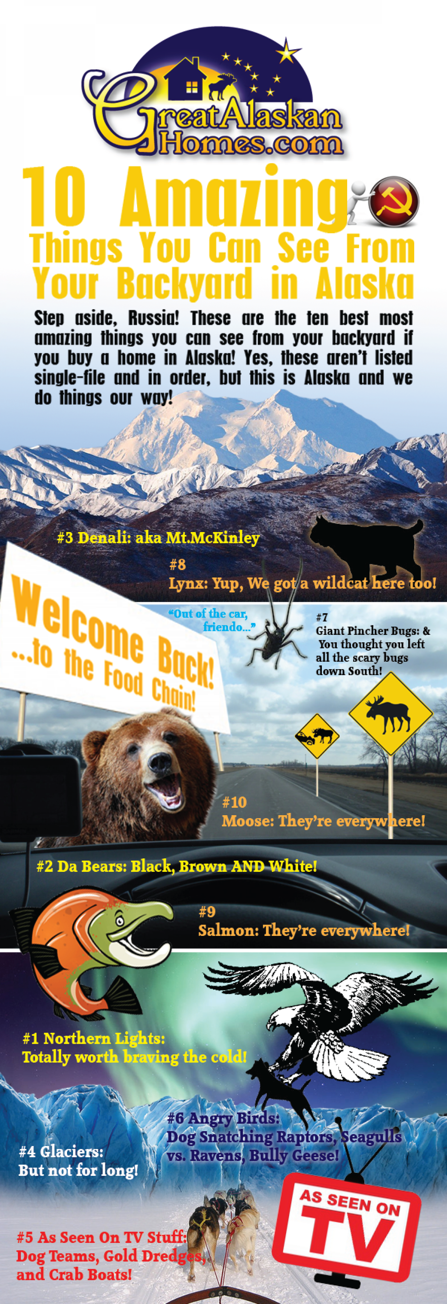 10 Amazing Things You Can See From Your Backyard in Alaska Infographic