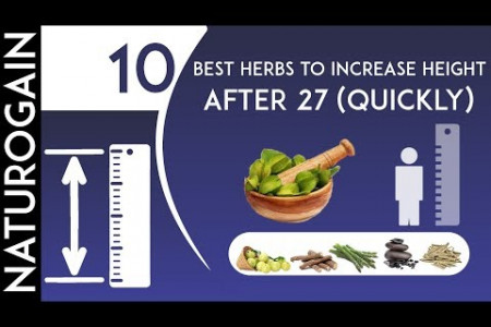 10 Best Herbs to Increase Height after 27 QUICKLY Infographic