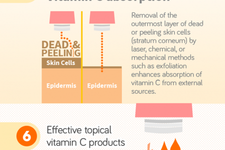 10 things about Vitamin C & what it can do for your skin Infographic