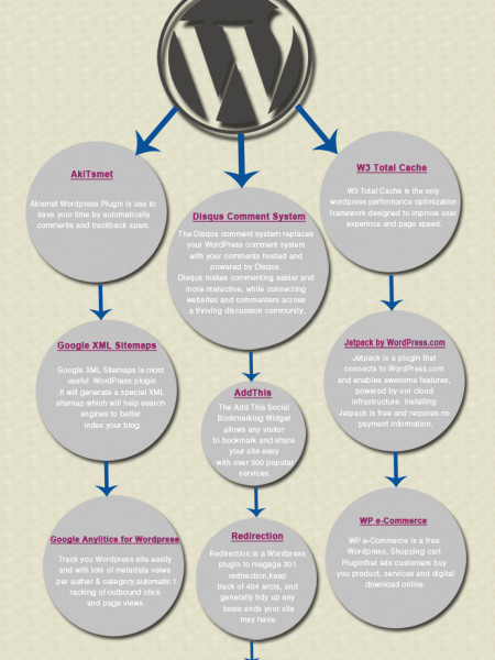 10 Useful Plugins for Wordpress Development Infographic