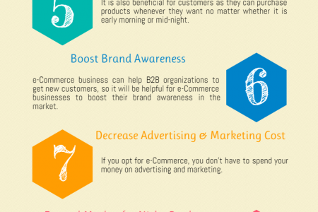 11 Advantages of  eCommerce Software Infographic