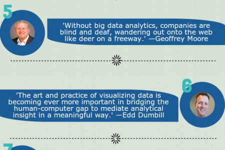 11 Interesting Quotes about Data Infographic