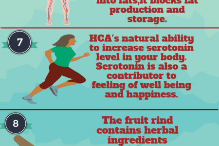 11 top notch reviews of Garcinia Cambogia extract  Infographic