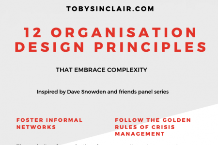 12 Organisation Design Principles that Embrace Complexity Infographic