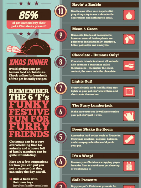 12 Pet Safe Tips of Christmas  Infographic