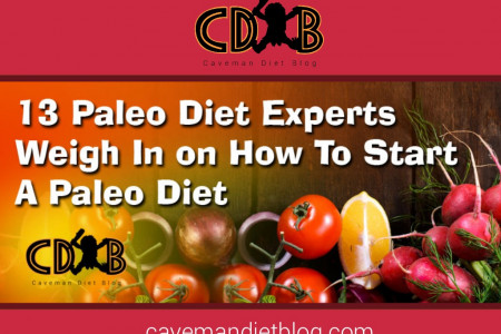 13 Paleo Diet Bloggers Weigh In on Starting a Paleo Diet Infographic