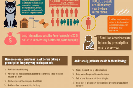 13 Stats About Pet Medication Errors Infographic