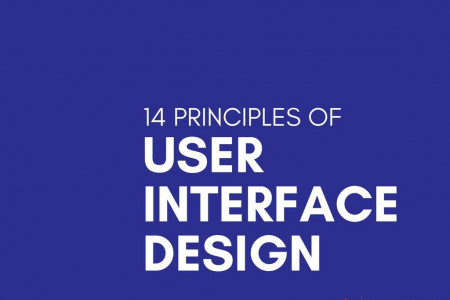 14 Principles of User Interface Design Infographic