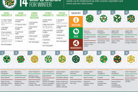14 Simple Salads for Winter Infographic