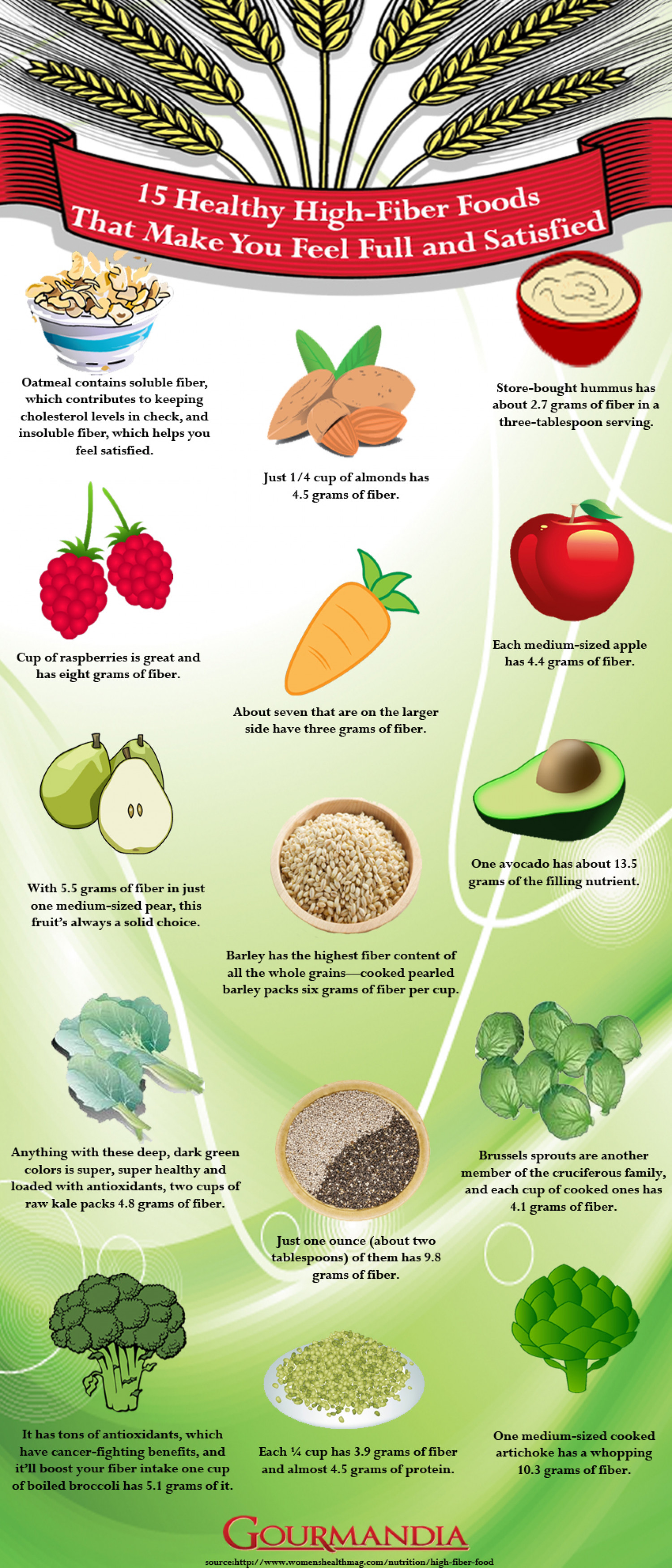 15 Healthy High-Fiber Foods That Make You Feel Full and Satisfied Infographic