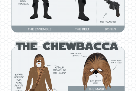 15 Star Wars Costumes You Can Make at Home Infographic
