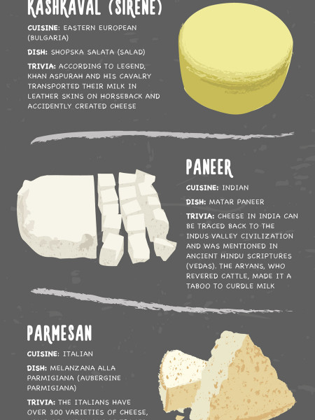 16 Unbelievable Facts About the World's Favorite Cheese Infographic