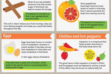 18 Foods that Help Burn Fat Infographic
