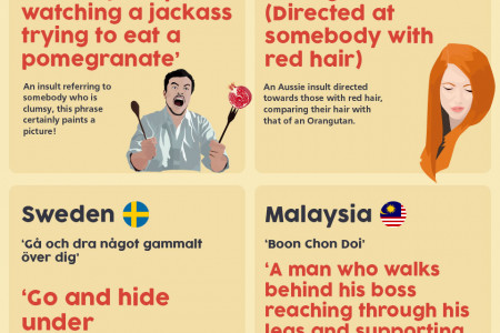 20 Bizarre Insults From Around The World Infographic