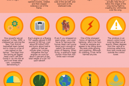 20 Interesting Aviation Facts You Probably Didn't Know Infographic