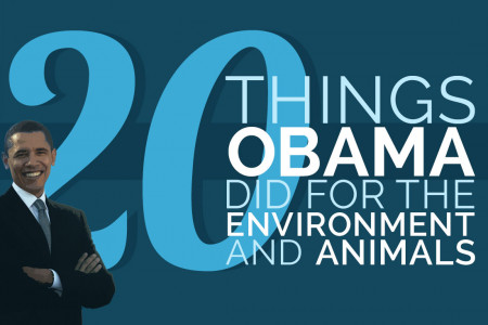 20 Things Obama Did for the Environment and Animals Infographic