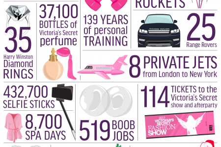 20 Things You Can Buy For The Same Price As The Victoria's Secret Fantasy Bra Infographic