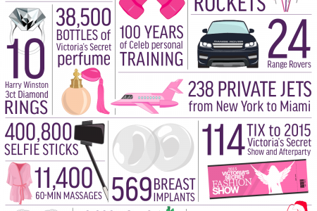 20 Things you can Buy for the Same Price of the Victoria's Secret Fantasy Bra Infographic