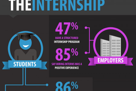 2013 Internships Trends and Survey Infographic