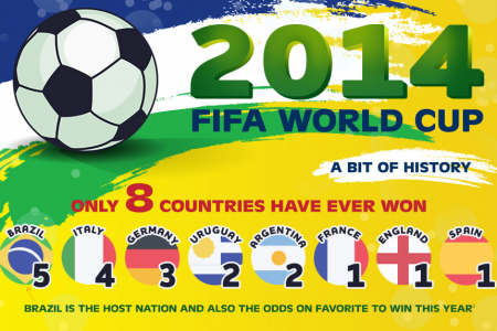2014 FIFA World Cup  Infographic