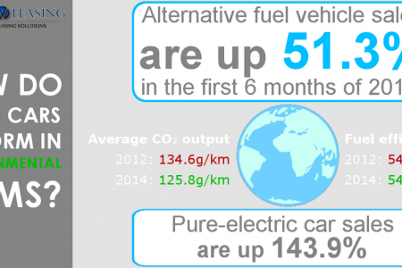 2014 in Environmental Terms Infographic
