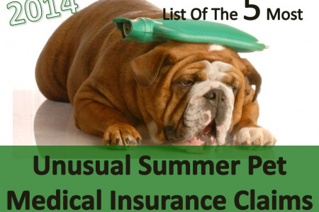2014 List Of The 5 Most Unusual Summer Pet Medical Insurance Claims Infographic