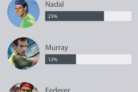 2014 Mens US Open tennis betting favourites Infographic