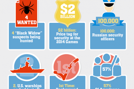 2014 Sochi Olympic Games By The Numbers Infographic