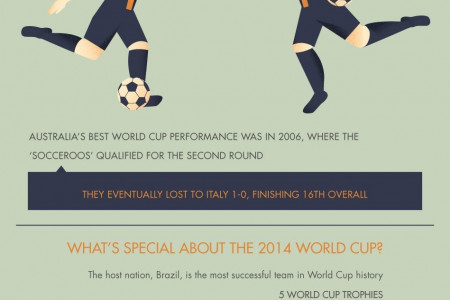 2014 World Cup in Brazil Infographic