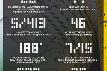 2015 ICC CRICKET WORLD CUP BY THE NUMBERS Infographic