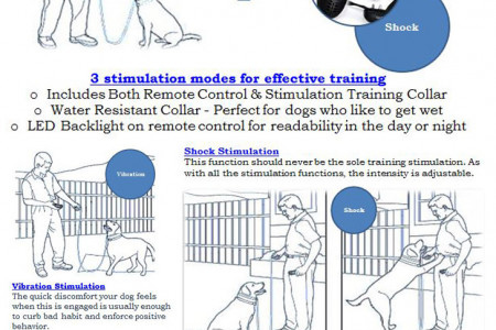 2016 best dog training collar with remote Infographic