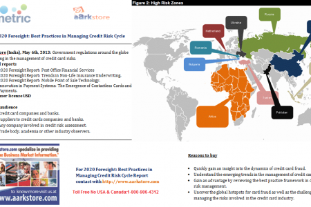 2020 Foresight: Best Practices in Managing Credit Risk Cycle Infographic