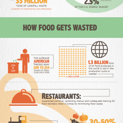 21 shocking u s food waste facts statistics for American cuisine facts