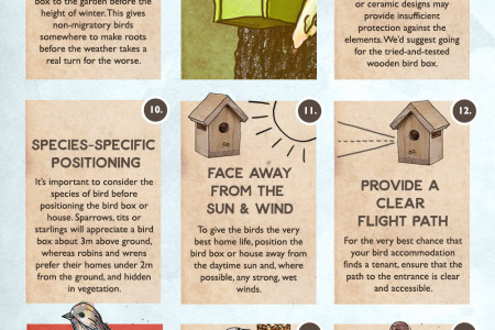 21 Things You Can Do to Look After Garden Birds in Winter Infographic