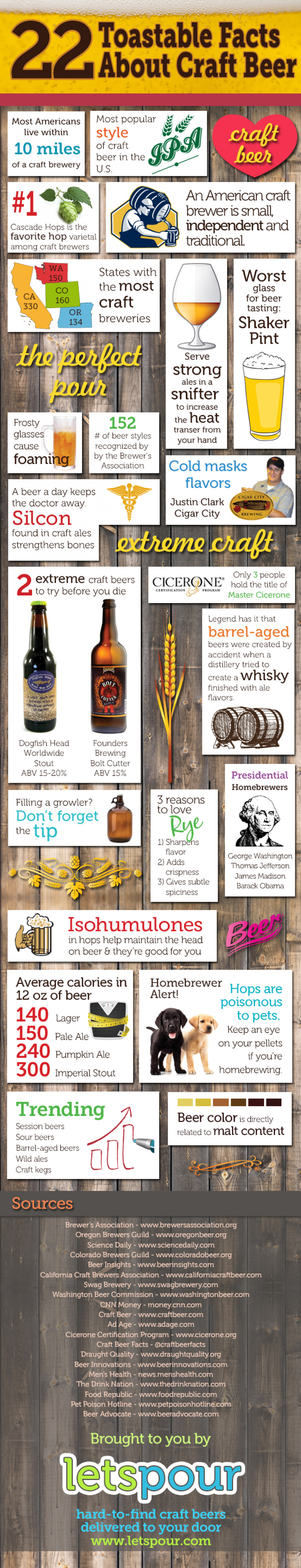 22 Toastable Facts About Craft Beer Infographic