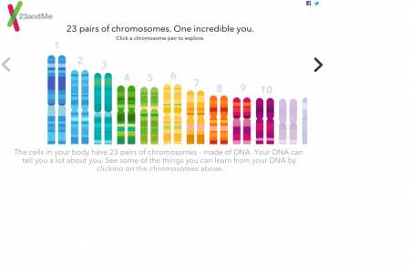 23 pairs of chromosomes. One incredible you. Infographic