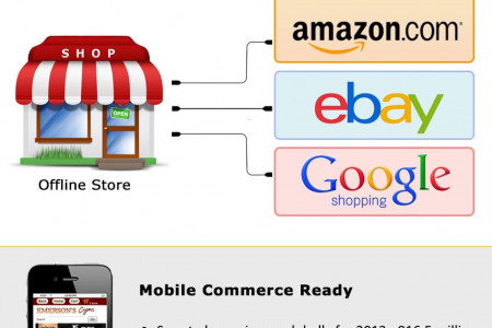 24Seven Cart (An Ecommerce Platform) Infographic