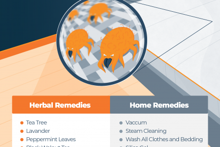 25 Bed Bug Natural Home Remedies and DIY Treatment Infographic
