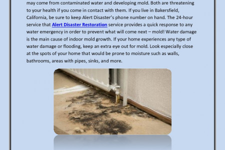 3 Steps of Mold Cleanup Bakersfield Infographic