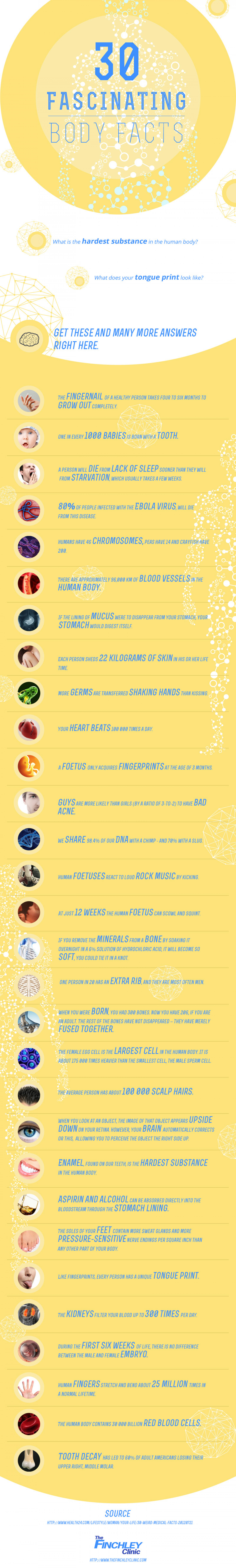 30 fascinating body facts- The finchley clinic Infographic