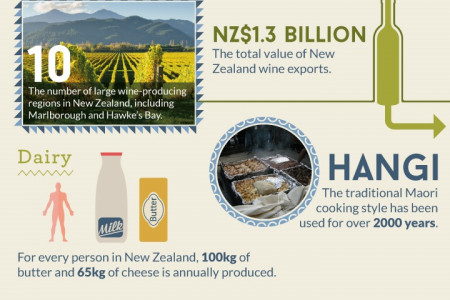 30 Quirky Facts About New Zealand Infographic