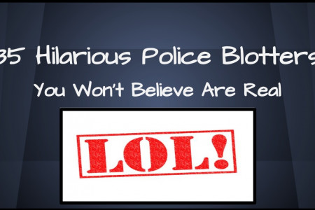 35 Hilarious Police Blotters You Won't Believe Are Real Infographic