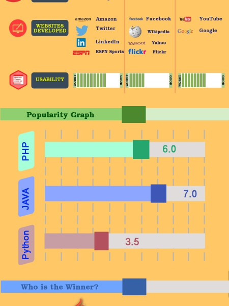 3 Best Programming Languages for Web Developers Infographic