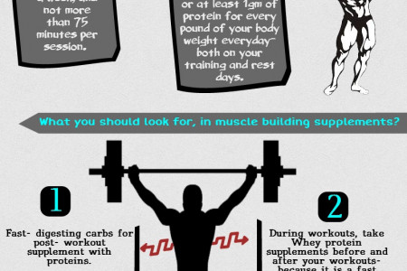 4 Best Bodybuilding Supplements To Support Your Nutrition Infographic