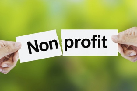 4 Marketing Strategies For Not For Profit Organisation Infographic