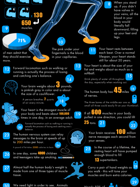 40 Facts about Fitness Infographic