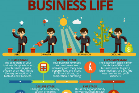 The Five Stages of Business Life Infographic
