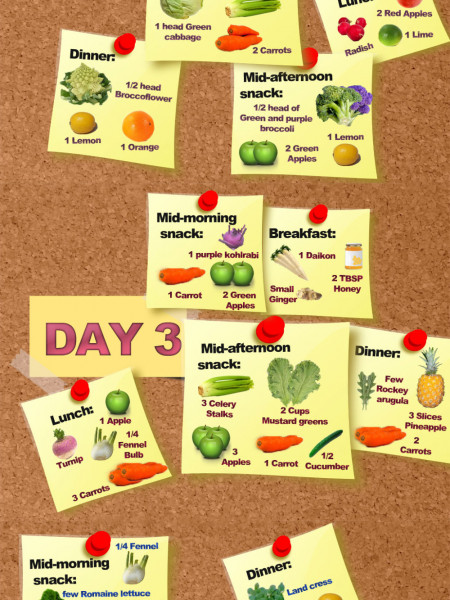 5 Days Juicing Weight Loss Plan for an Average Person Infographic
