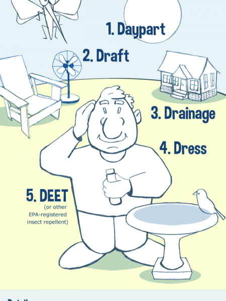 5 D's of Home and Yard Mosquito Control Infographic