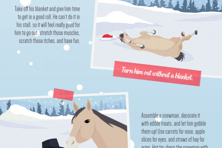 5 Fun Ways to Bond with Your Horse This Christmas  Infographic